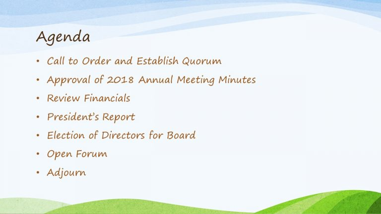 2019 Annual HOA Meeting Slide